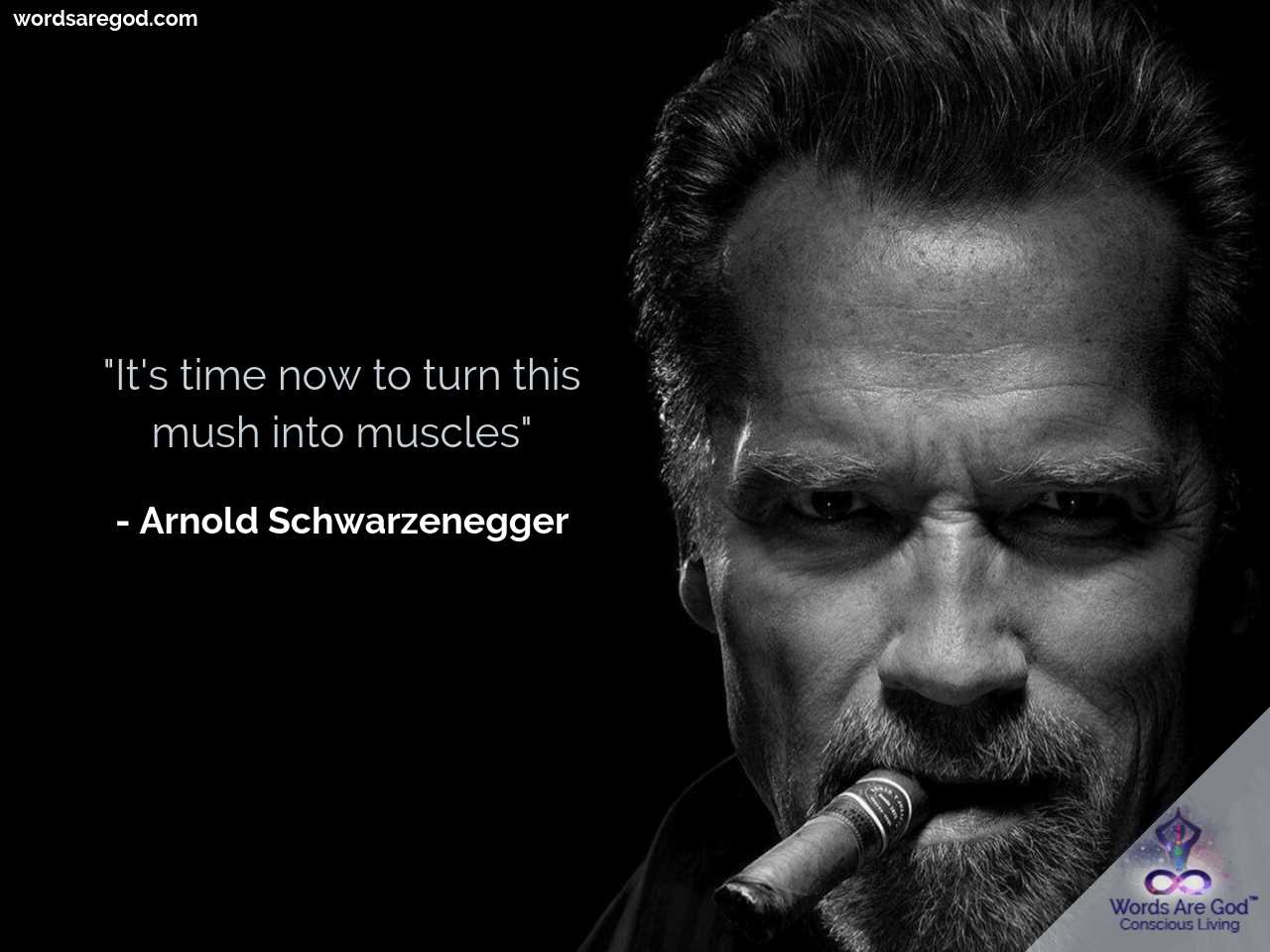 Arnold Schwarzenegger Best Quote