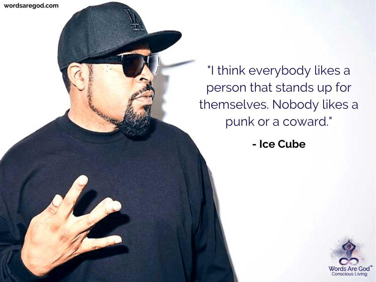 Ice Cube Life Quote