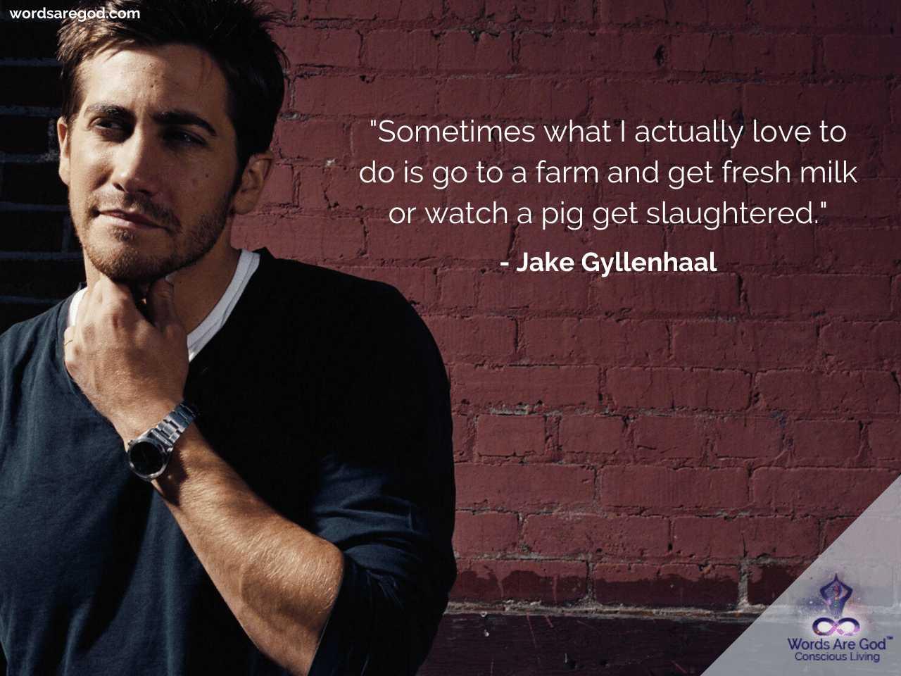 Jake Gyllenhaal Motivational Quotes by Jake Gyllenhaal