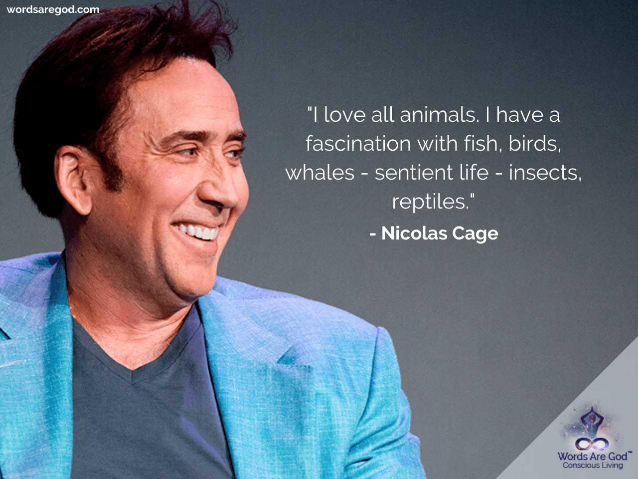 Nicolas Cage Motivational Quotes by Nicolas Cage