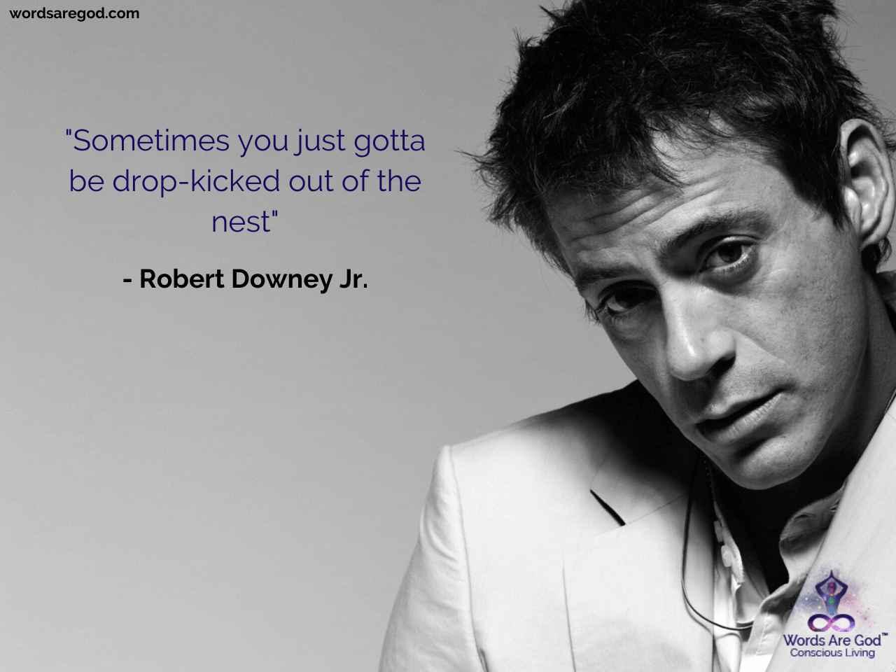 Robert Downey Jr. Motivational Quote by Robert Downey Jr.