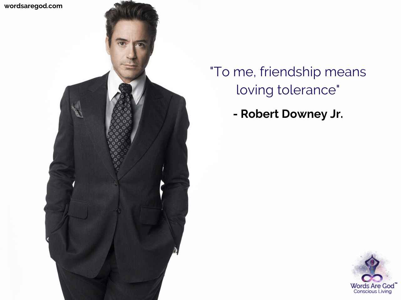 Robert Downey Jr. Life Quote